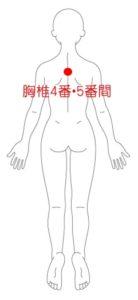 胸椎4番・5番